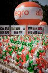 Allegro gra EKO_6.jpeg