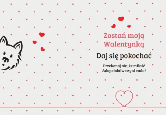 Daj się pokochać na Walentynki
